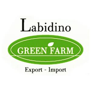 labidino